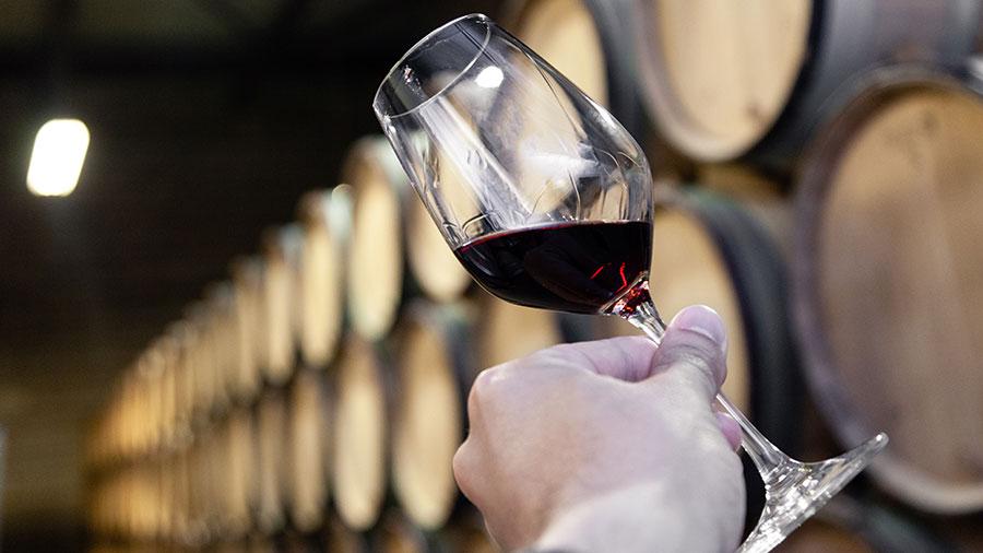 Como seleccionar un buen vino